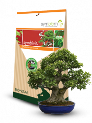 Symbivit Bonsai 150g